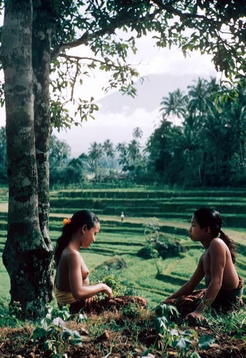 © George Rodger, 1953, Bali, Indonesia --- Two young Balineese girls rest by rice paddies under the sacred mountain Gunung Agung near the village of Iseh. --- In 1947 Rodger was invited to join Robert Capa, Henri Cartier-Bresson, David Seymour and William Vandivert in founding Magnum.