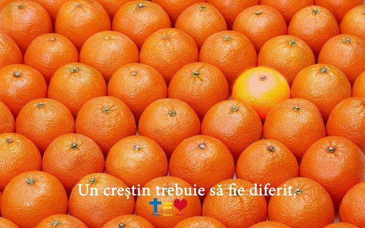 https://www.facebook.com/praysharelove/  Un creștin trebuie să fie diferit ! #crestin #christian #different #diferit #God #Dumnezeu #praysharelove