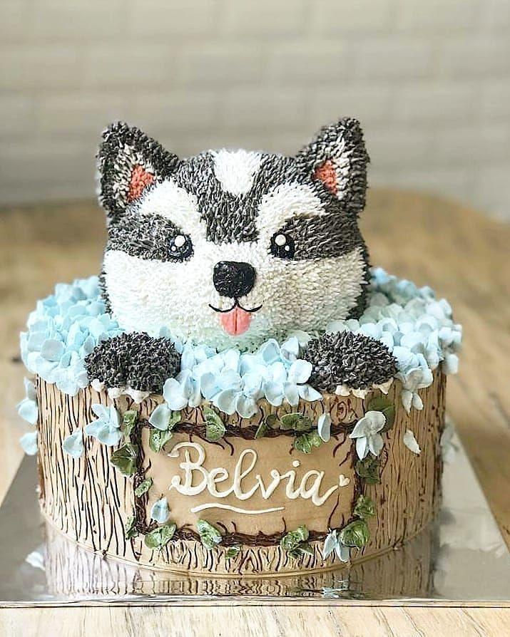 Birthday Cake Bandung : birthday, bandung, Pouch, Birthday, Cakes, Buttercream, Flowers,, Kids,