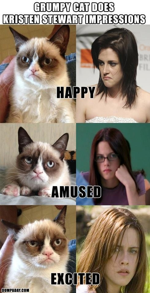 Grumpy Cat and Kristen Stewart - frightfully accurate
