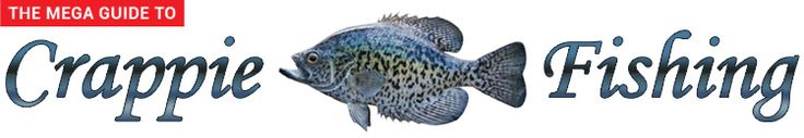 Best 25 crappie fishing ideas only on pinterest crappie for Sodium fishing gear