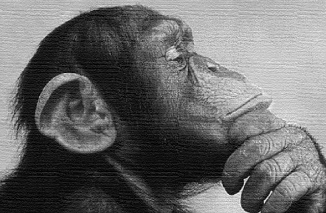 «Ο γενικός πληθυσμός δεν ξέρει τι συμβαίνει και δεν γνωρίζει καν ότι δεν ξέρει» .  NOAM CHOMSKY   Από τον Gary Z McGee    1.) Είναι σχεδ...
