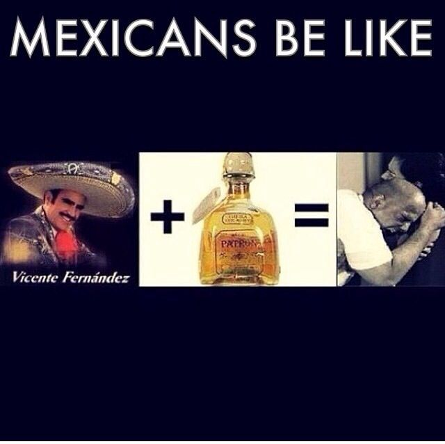 Mexicans be like: Vicente Fernandez music + Tequila = Well you know..