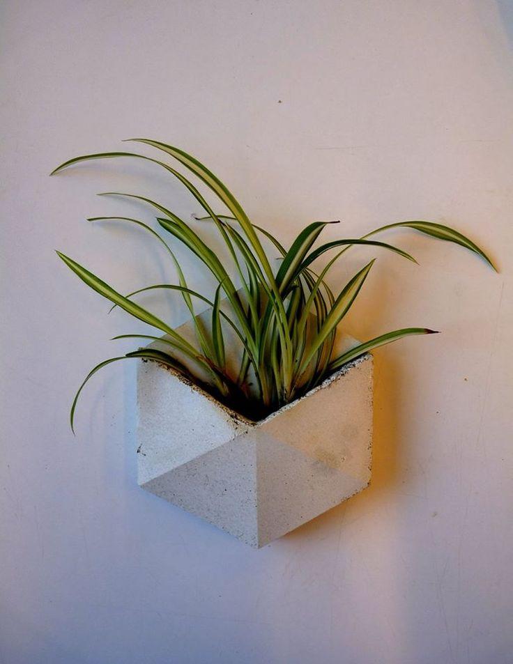 Concrete tile with plant