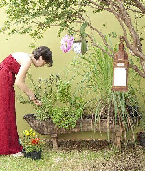 Manuela, publicitária, cultiva manjericão, alecrim e pimenta em um cocho de madeira rústica: