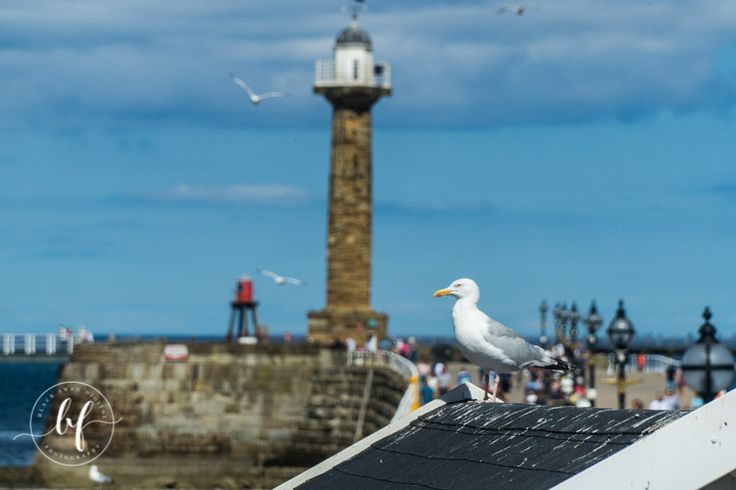 Whitby Nth Yorkshire. Shutter speed 1/2000 sec, F/5, Focal length 105 mm, K scale 5200, Polaroid filter, ISO 100. Sony A7 Mk ii, Sony 18-105 mm lens.