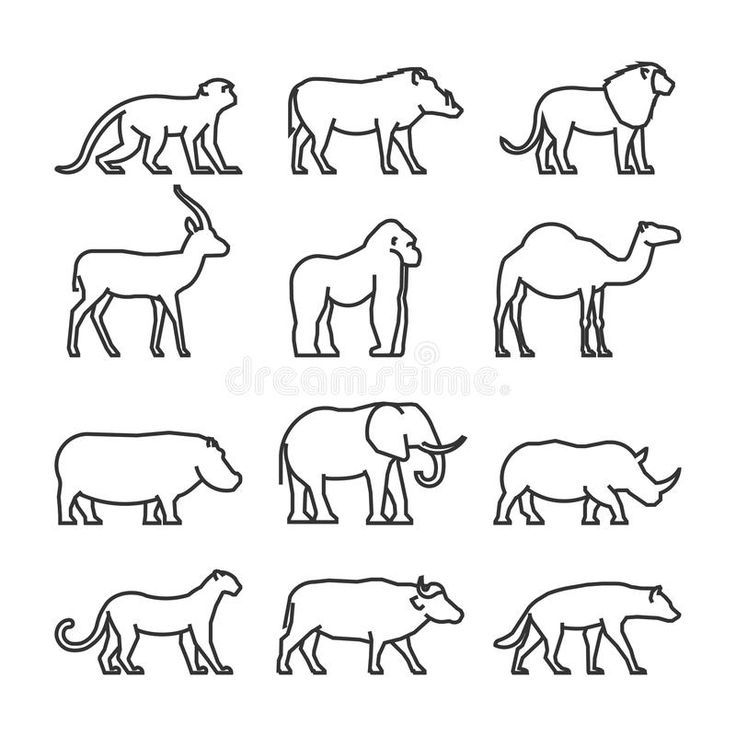Animals Animal Outline African Animals Animal Line Drawings