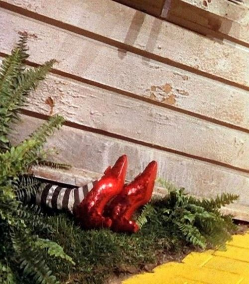 Scenes from the liberation of Munchkinland:The Wizard of Oz(1939, dir. Victor Fleming)