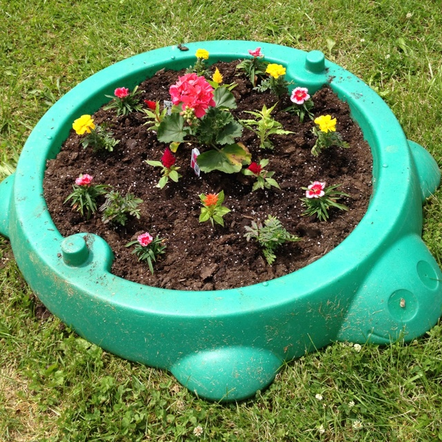Bre turned her old sandbox into a flower garden.