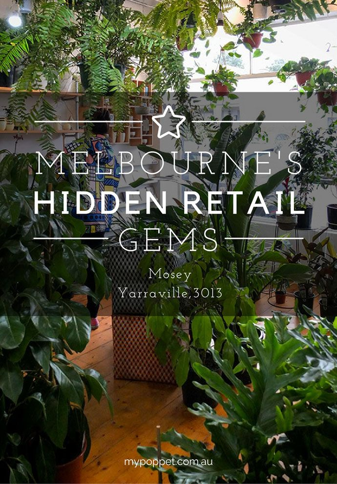 Indoor plant love -  shopping guide - mosey, Yarraville Melbourne