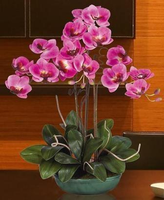 Silk Orchids, Silk Orchid Arrangements, Cymbidium Silk Orchids, Dendrobium Silk Orchids, Phalaenopsis Silk Orchids, Cattleya Silk Orchids   The Silk Garden