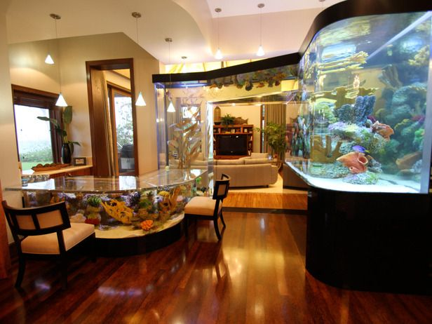 Aquarium cabinet! Do you SEE this? Look closely...the counter, up the column, across the archway, and over to the main aqaurium! So cool!