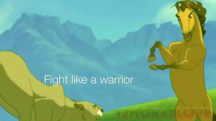 animash - Live like a warrior ( Dedications )