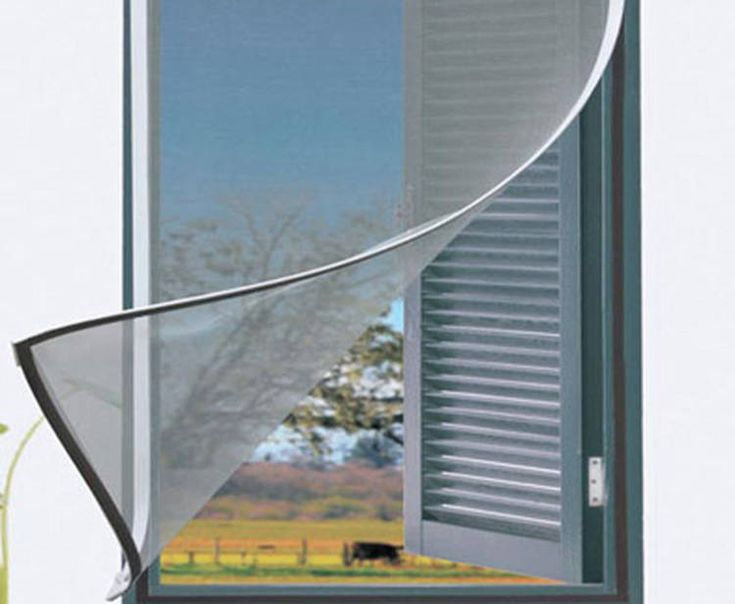 Contra el dengue: Menú de mosquiteros para cada tipo de ventana