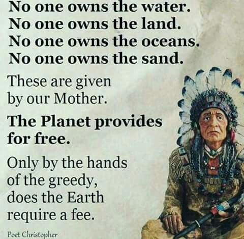 Only by the hands of the greedy, does the Earth require a fee