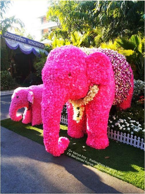 Una Chulada Kanya Boy Google Elephant Made