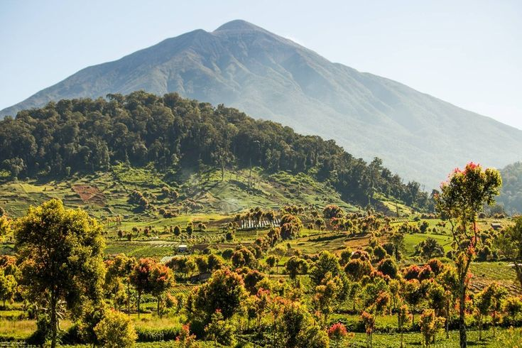I mean, come on! | 35 Gorgeous Pictures Of Indonesia That Will Take Your Breath Away