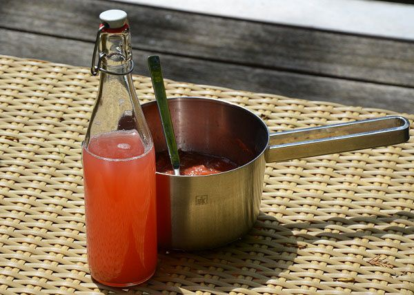 Rabarber inmaken en rabarberlimonade maken