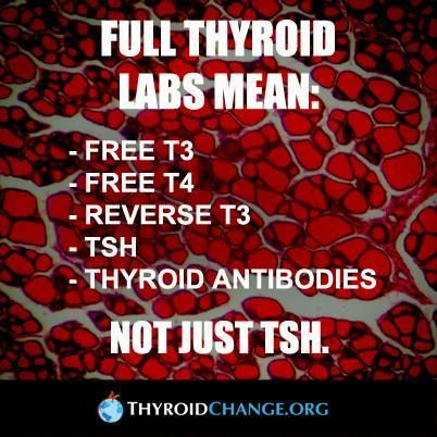 Thyroid Testing