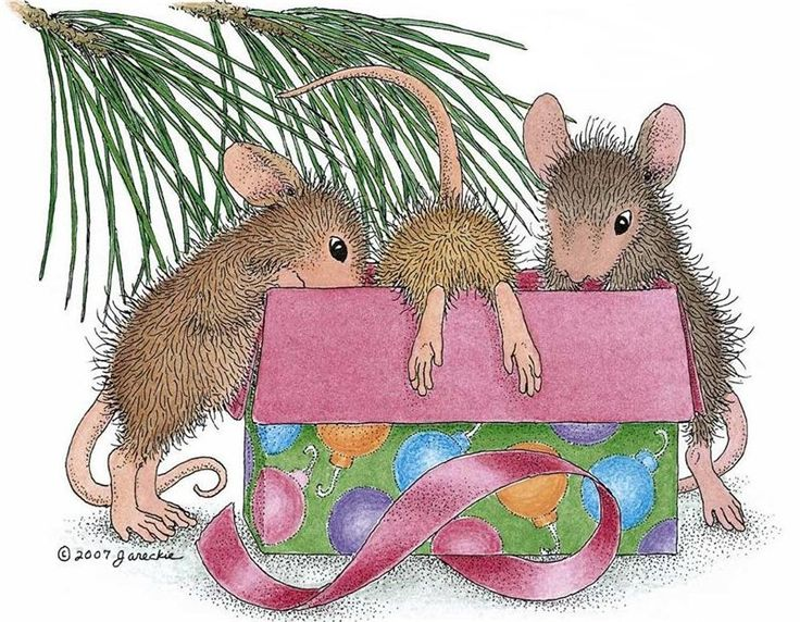 17 Best Images About House Mouse On Pinterest