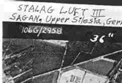 """Good reading to follow up watching the movie """"The Great Escape"""". Gives real history of events and characters from Stalag Luft III, Sagan - WWII"""