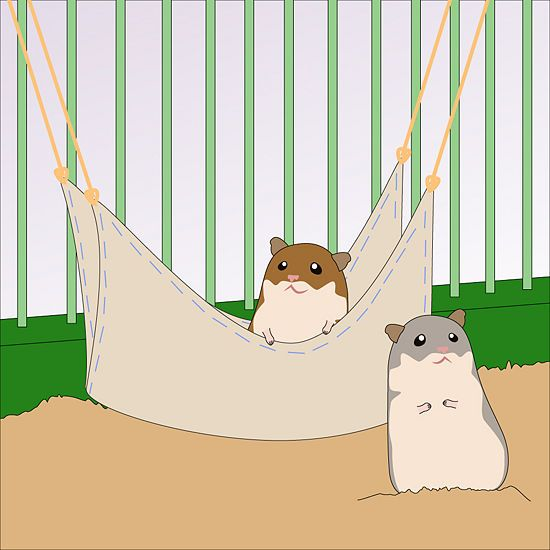 How to Make a Hamster Hammock: 7 steps - wikiHow: Hamsters Haven, Things Hamsters, Hammocks You, Crafty Things, Hamsters Hammocks, Hamsters Ideas, Hamsters Paradis, Hamsters Robert, Comforter Places