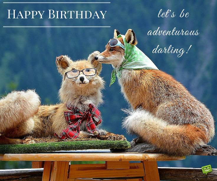 366 Best Images About HAPPY BIRTHDAY VIDEOS On Pinterest