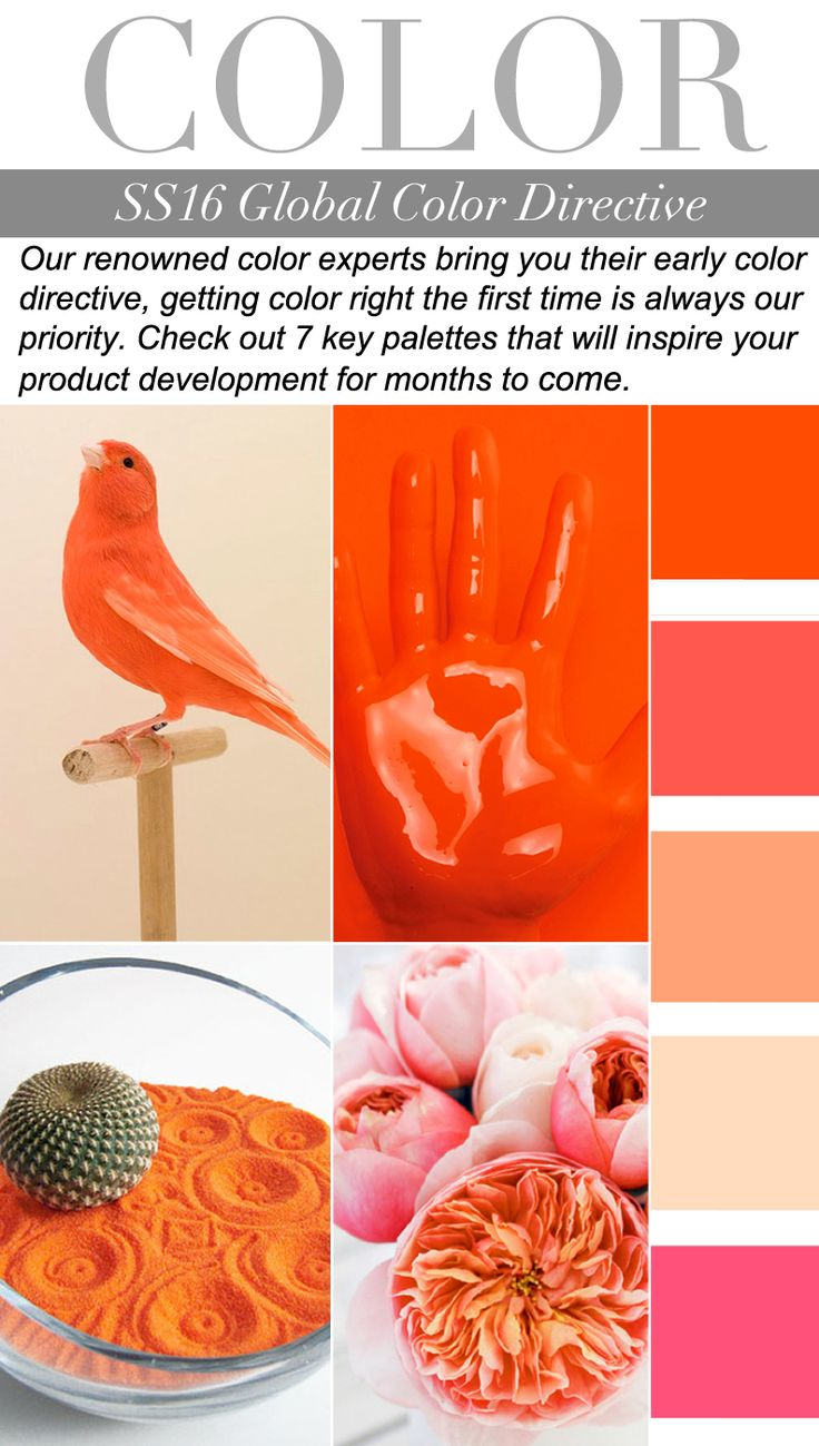 Trend Council:  COLOR - SS16 Global Color Directive for the months to come - Oranges, peaches, coral and Pink #colourpalette...x