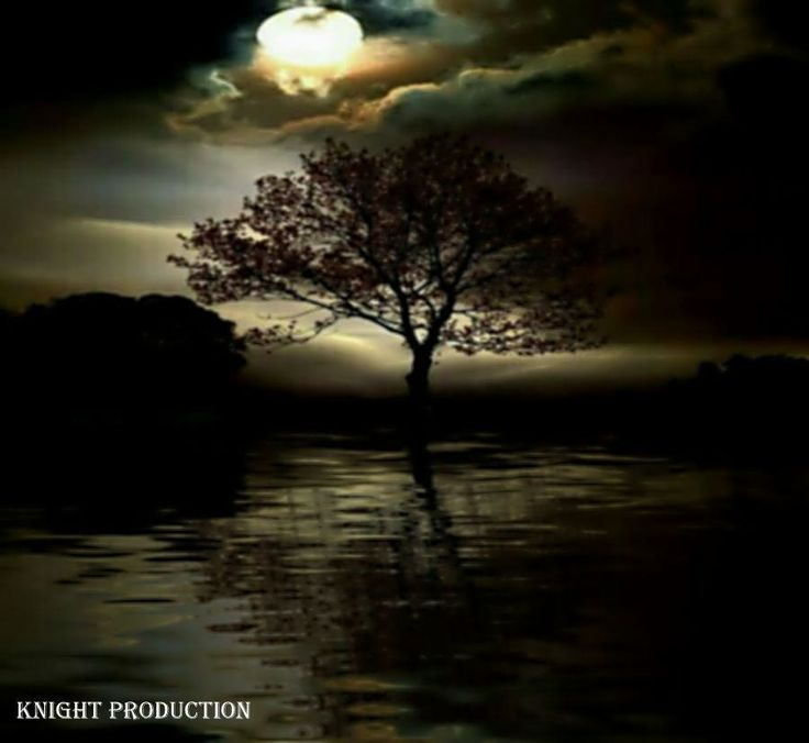https://flic.kr/p/AsoKLB | Moonlight night