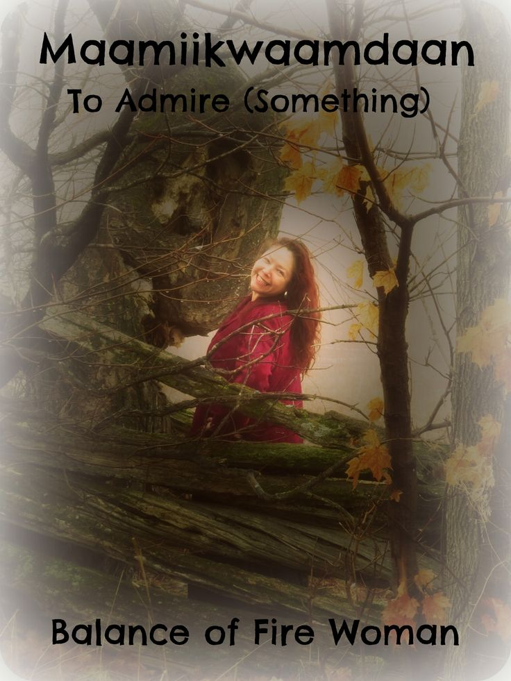 Admire in Ojibway