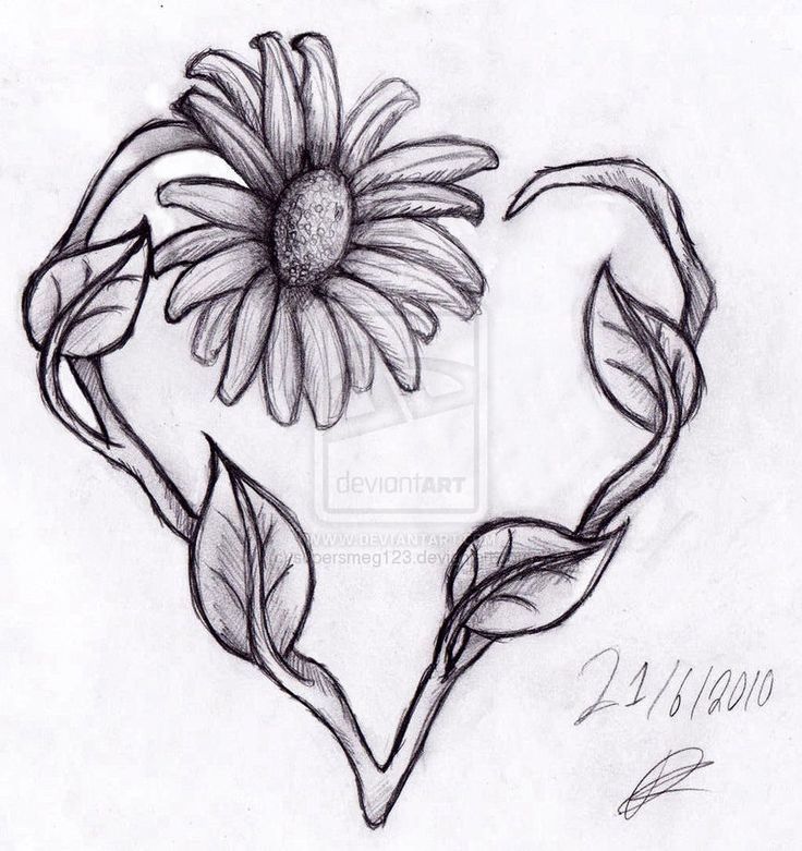 Heart Tattoo Line Drawing : Best heart tattoo drawings images on pinterest