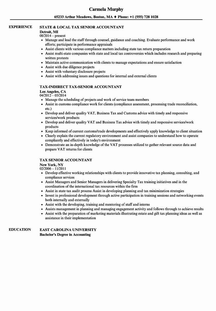 Senior accountant resume sample luxury tax senior