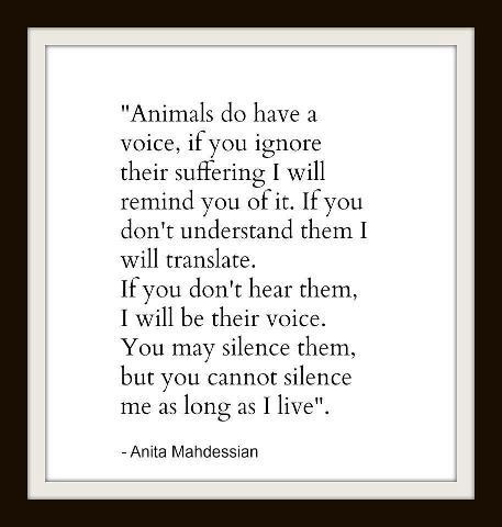 Animals do have a voice, if you ignore their suffering I will remind you of it…