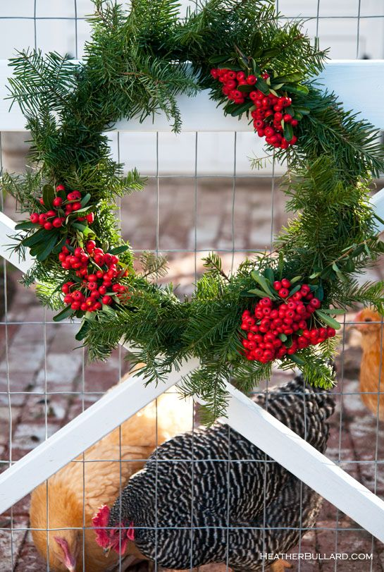 love this!: Chicken Coops, Xmas Coops