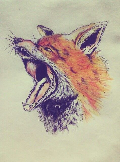 wolves !!