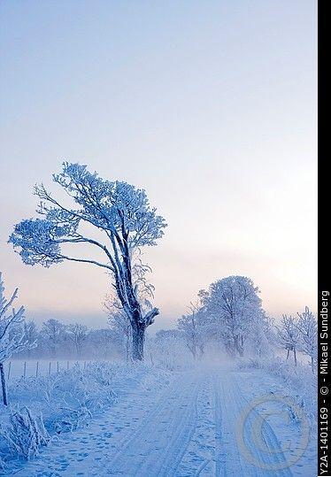 Karlslund in Örebro winter, Sweden
