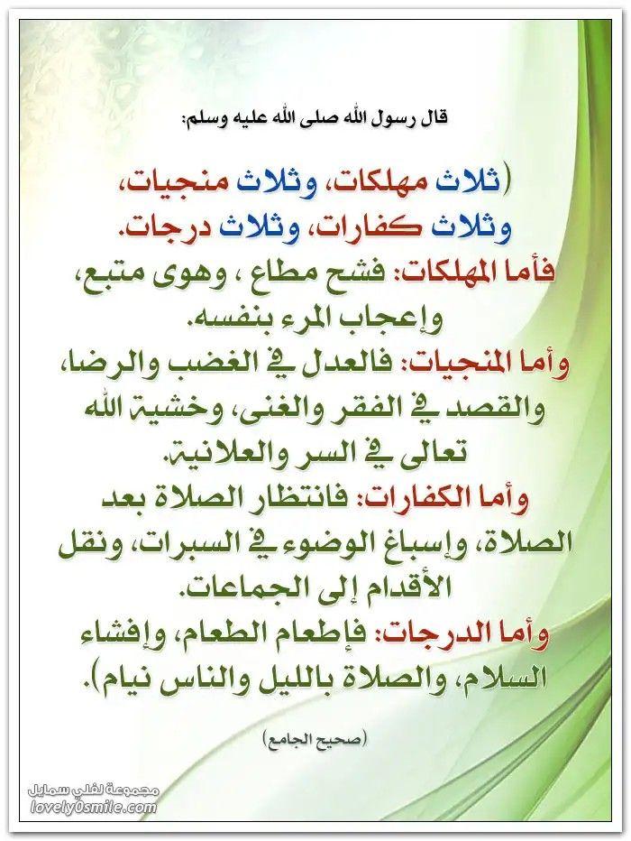 Pin By The Noble Quran On I Love Allah Quran Islam The Prophet Miracles Hadith Heaven Prophets Faith Prayer Dua حكم وعبر احاديث الله اسلام قرآن دعاء Islam Facts Islam Beliefs Cool