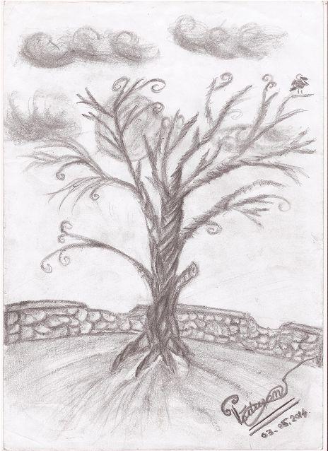 """""""Creepy tree"""""""
