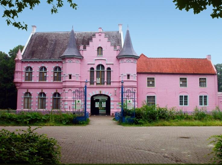 Het roze kasteel