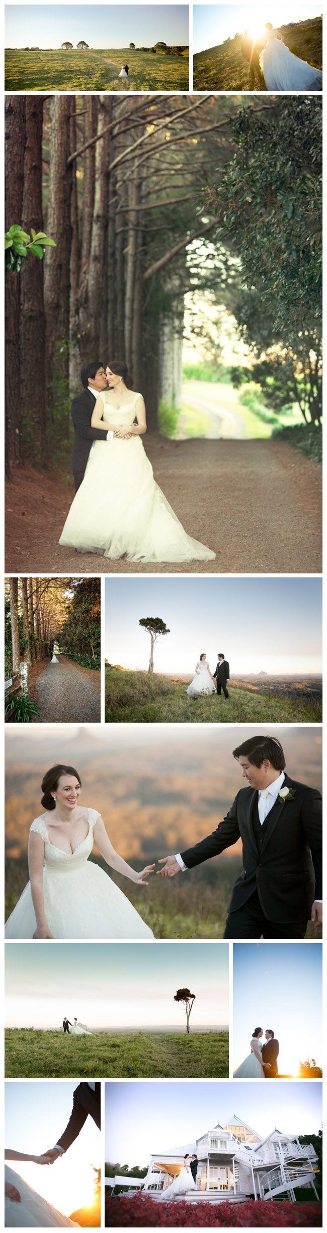 Maleny Manor Wedding Photography   focusfilms.com.au