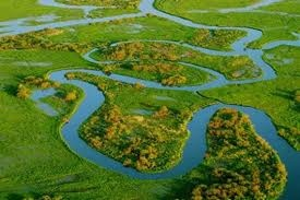 Narew River valley,called''polish amazonia'',Poland