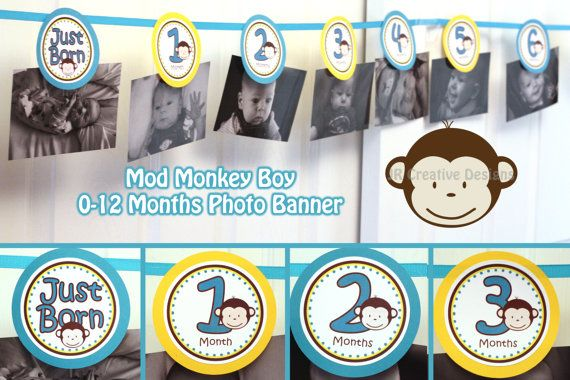 0 months to 12 months photo banner  - mod monkey theme boy - 1st year birthday party - picture holder