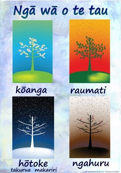 Maori Seasons - Google Search