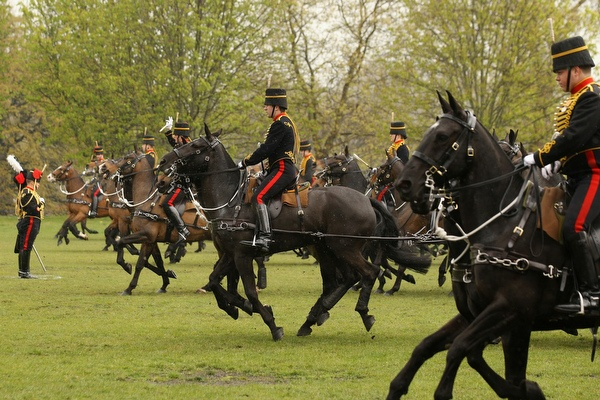 You're an early riser, then you might be lucky to meet King's Troop Royal #Horse Artillery in Hyde Park #london during #spring - at 5min' walk from #ChevalPhoenix Apartments