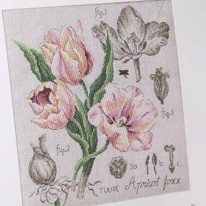 Étude à la Tulipe (maxi-grille) à broder au point de croix Les Brodeuses Parisiennes