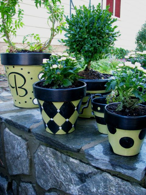 Painted Pots , I wanted some planters and pots to coordinate with