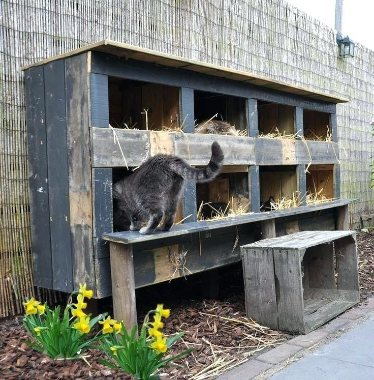 outdoor cat shelter for multiple cats feral cat house more