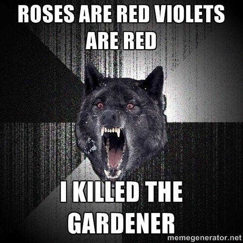 Insanity Wolf via Meme Generator                              …