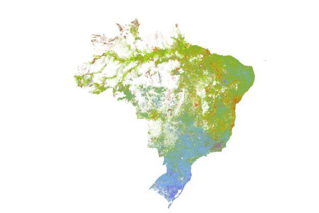 No mapa, é possível perceber a divisão entre a população declaradamente branca (pontos azuis) e o resto quase exclusivamente pardo (pontos verdes). Já a população negra (pontos vermelhos) aparece concentrada em diferentes pontos, a exemplo da Bahia. Populações indígenas predominam em regiões de fronteira, como na Floresta Amazônica.