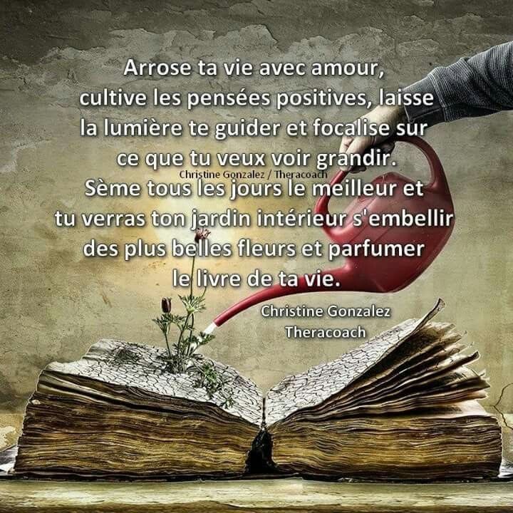 Citation Zen Du Jour Je Pense A Toi Pensees Positives